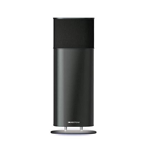 Soundstream Sound Tower Portable Bluetooth Speaker - Medium (Renewed)