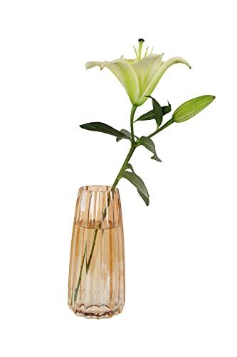 HofferRuffer Jarrón de cristal para decoración del hogar, moderno y grande, para...