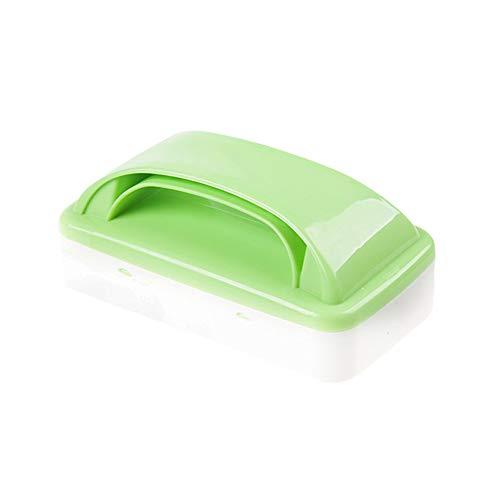 Surenhap Lint Remover poussière Brosse de Nettoyage de Charpie Brosse de Nettoyage Antistatique Multifonction à Doubles Rouleaux (Vert)