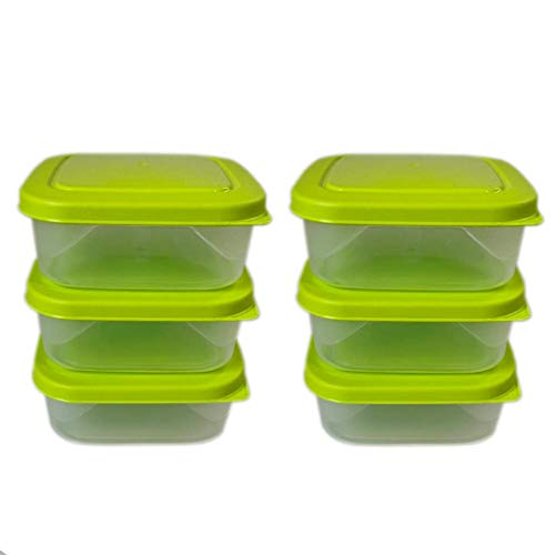 ml24 6 recipientes de congelación, 0,6 L, transparente/verde, 13,5 x 13,5 x 5 cm, cuadrados.