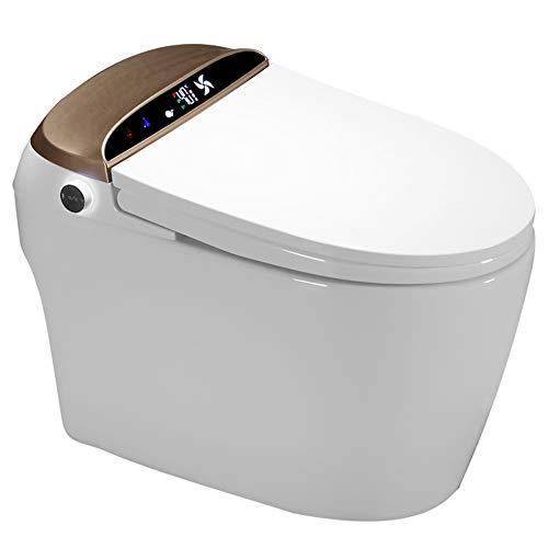 VIY Integrierte Elektrisch Toilette, Smart Beheizte Bidet, Mit Dual Nozzle Massage Steuerung, Toilettendeckel, mit Gewärmter Sitz, Warme Lufttrocknung, Fernbedienung, Nachtlicht (1500W)