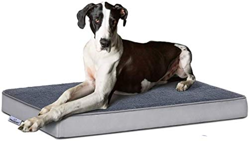 Focuspet Cuccia Ortopedica per Cani,Cuscino per Cane Tappetino in Memory Foam per Animali Domestici con Guaina Rimovibile e Lavabile per Cani,Include Giocattolo da Masticare,Taglia L:89x56x7.5cm