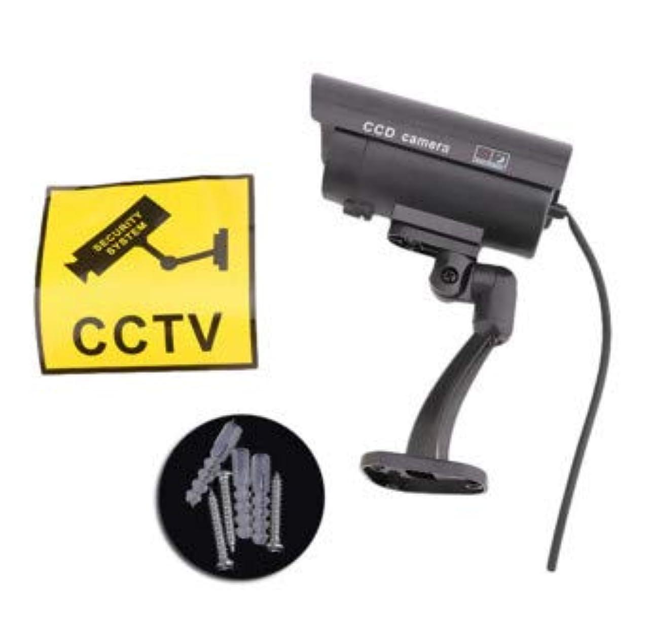 熟読する位置する酒本物のようなCCD防犯ダミーカメラ/犯罪防止策/監視/セキュリティー/家/駐車場