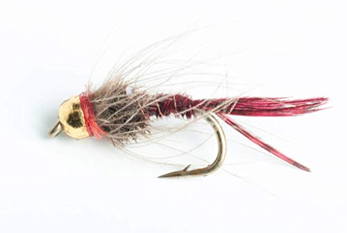 Blue Wing Olive Bead Head CDC Pheasant Tail Nymph Fly, 6-Pack (#14)