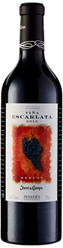 Juvé & Camps | Vino Reserva Tinto Viña Escarlata | 75 cl | D.O Penedes | Merlot