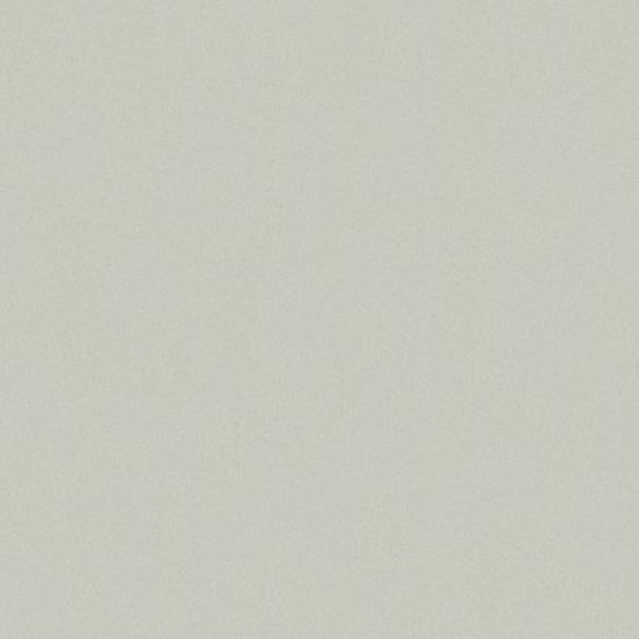 ほうき旅行ムスタチオポリエステル化粧合板 カラーフィットポリ RK-6113 3x6 表面エンボス(梨地)仕上