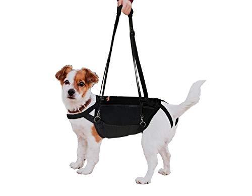 Full Body Dog Leash