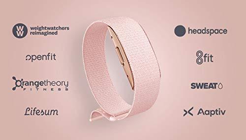 Amazon Halo – Measure activity, sleep, body composition, and tone of voice - Blush + Rose Gold - Medium