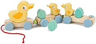 Classic Wooden Pull Along Toy - 9pc Duck Family Set : 1 Mother Duck, 2 Baby Ducks , 3 Eggs and 3 Cars - Encourages Number Learning - 18 Months+