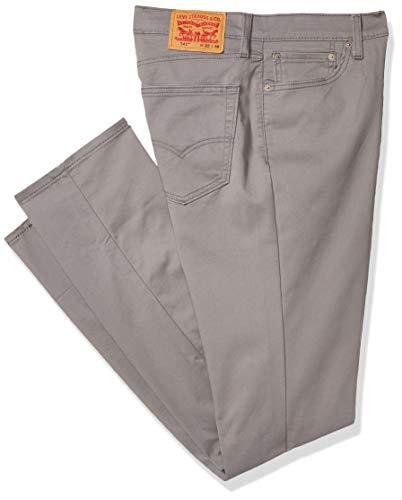 Levi's Herren Big & Tall 541 Athletic Fit Pant Lässige Hose, Steel Grey-All Seasons Tech-Stretch, 42W x 36L