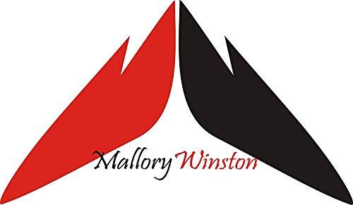 Mallory Winston Women's Babydoll Nighty Sleepwear Satin Lingerie Nightwear with Panty (Free Size) Red