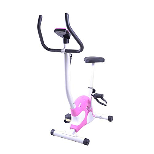LSYOA Interior Bicicleta Estática, Exercise Bike Bicicleta Spinning con Pantalla LCD, Ajustable Asiento Equipo De Ejercicios,Purple