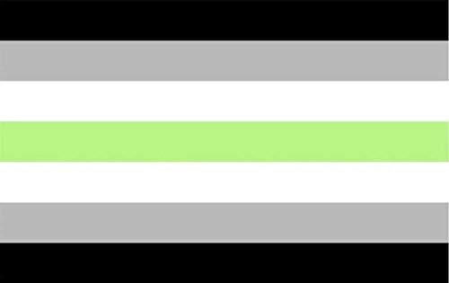 INERRA Grote vlaggen 150cm x 90cm - Pride LGBT Bereik - Met 2 metalen ogen - 5ft x 3ft AGender