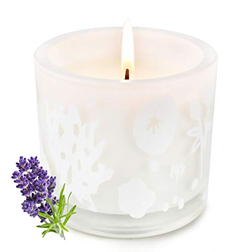 DOVANLY Candle, Scented Soy Candle for Home, Lavender Scented Candle Gift, Jar Candle for Home Decorative, 7.1 oz, Up to 50 Hours, Highly Scented and Long Lasting