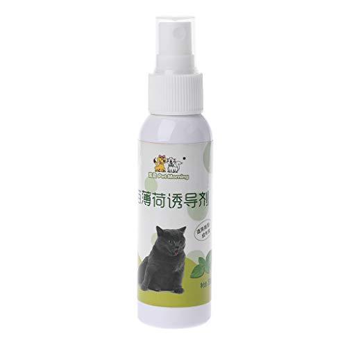 Koobysix Cat Supplies Katzenminze Haustier Training Spielzeug Natürliche Gesunde Katze Minze Lustiges Kratzspielzeug Spray Geschenke für Ihre Katzen