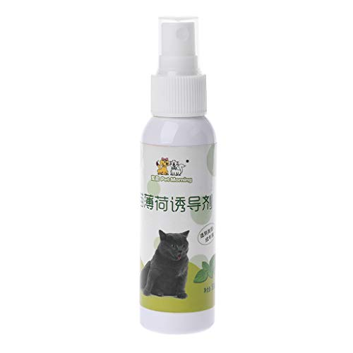Huwaioury Katzenminze Spray Trainingsspielzeug – Natürliche gesunde Katzenminze Neuheit Kratzspielzeug