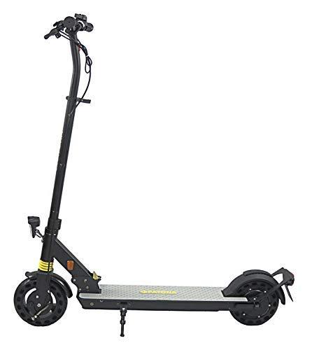 PATONA E-Scooter mit Straßenzulassung - 20 km/h - 250 W Motor - 20 km Reichweite - klappbar - höhenverstellbar Elektroscooter - 8 Zoll - 120 kg Tragkraft (PT13-1)
