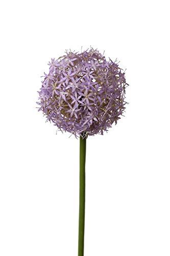 PARC Network - Kunst Allium Blüte, lila, 75cm, Ø 12cm - Zierlauch Deko - Kunstblume - Blumenlauch Künstlich - Kunststoff Zierlauch-Pflanze