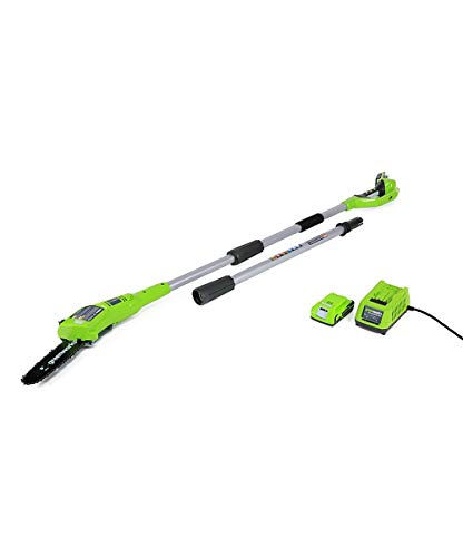 Greenworks 24V 8-inch Cordless Pole Saw, 2.0 AH Battery Included 20352