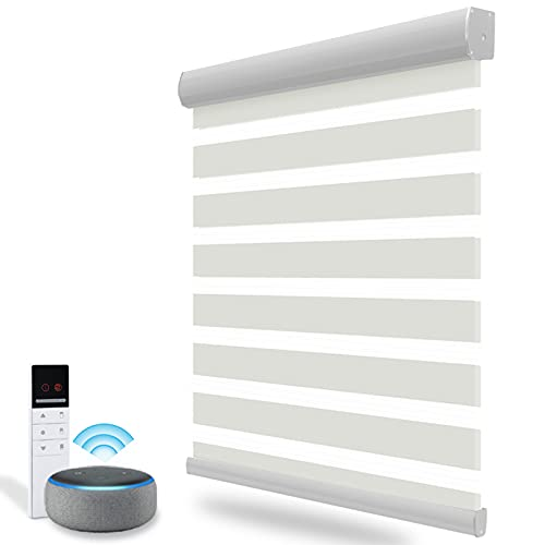 Motorized Blinds with Remote for Window,Zebra Blinds & Shades for Living Room/Bedroom/Home, Smart...