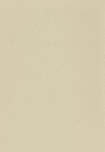 Volvox Peinture d'argile Espressivo - Groupe de prix A - 0,9 l - Couleur vert clair - 291