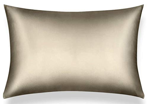 AMASILK 22 Momme 100% Pure Mulberry Silk Pillowcase for Beautiful Hair and Skin, Hidden Zipper, Queen Size (20x30) Silk Pillow Cases with Gift Box, Silk Pillow Covers - Best Touch Out There