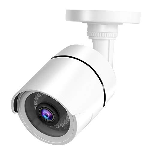 Labuda Cámara Dvr para Exteriores, cámara de visión Nocturna precisa, Conveniente portátil para la Tienda de la Oficina(4MP PAL Format)