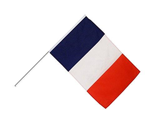 Digni Grand Drapeau France sur hampe 60 x 90 cm Sticker Gratuit