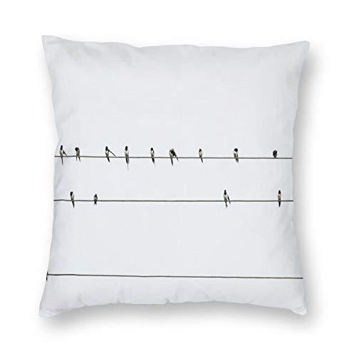FULIYA Juego de 1 funda de cojín de 45 cm x 45 cm, fundas de almohada decorativas cuadradas para sofá, salón, sofá, cama, golondrinas, pájaros, alambres, minimalismo.