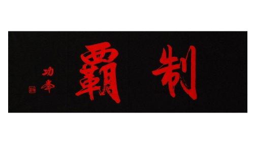剣道 手拭 面タオル 面下 手ぬぐい 制覇 (黒(焦げ茶))
