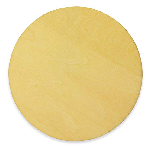 BrilliantBuys 10 x Wooden Circle Shapes, Plain Wood Craft Tags 100mm (10cm)