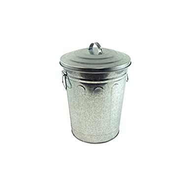 Steven Raichlen Best of Barbecue Galvanized Charcoal and Ash Can with Lid - SR8012