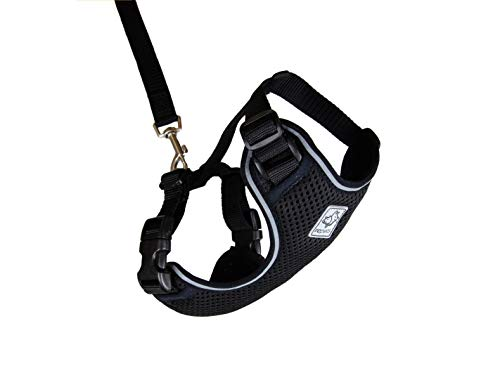 RC Pet Products Adventure Kitty Harness, Cat Walking Harness, Medium, Black (53804001)