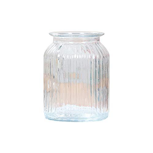 Skyeye 1PCS Vertical rayé col Large Vase en Verre Jacinthe d'Vase en Verre hydroponique Vase pour Home Garden Décoration Blanc 14.5 *11 CM
