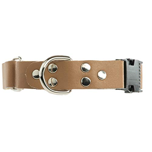 Diamind Leather Martingale Dog Collar – Quick Snap Buckle – Excellent for Training Without Sacrificing Dog's Health – Superior Option to Slip Collar – Non-Choke Collar (Sand)