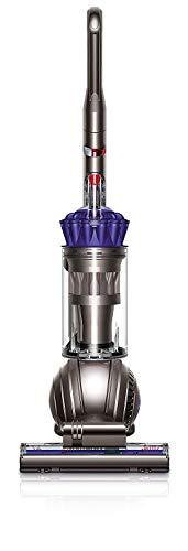 Dyson Ball Animal Upright Vacuum , Purple (Certified Refurbished)