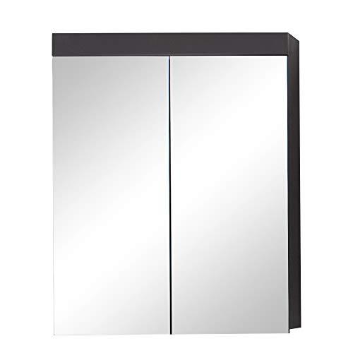 trendteam smart living Badezimmer Spiegelschrank Spiegel Amanda, 60 x 77 x 17 cm in Grau/Front Agave Grau Hochglanz ohne Beleuchtung