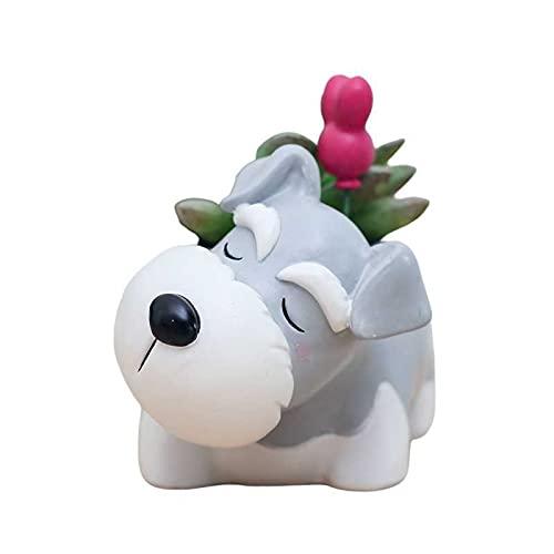 Cuteforyou Cute Animal Shaped Cartoon Home Decoration Succulent Air Plant Holder Flower Pots (Small...