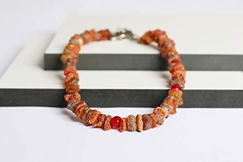 Bernsteinkette für Hunde aus Roh Baltischer Bernstein mit Rote Jade Beads verziert | Zeckenhalsband | Bernstein Gegen Zecken | Zecken und Flohschutz Halsband (20-25 cm)