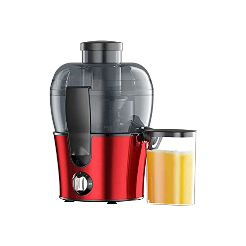 WGLL Juicer Machines,Slow Masticating Juicer Extractor, Cold Press Juicer with Speed Modes, (350ML), Easy to Clean & Quiet Motor for Vegetables&Fruits