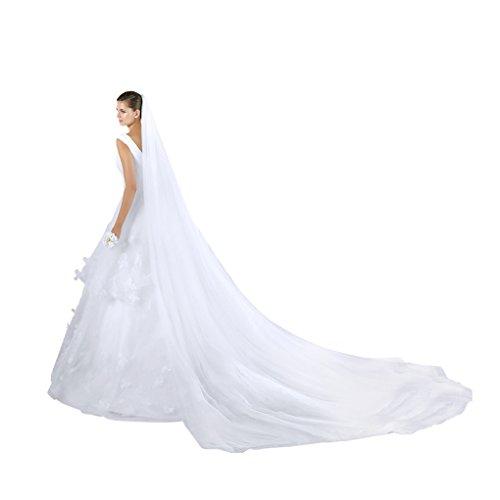 FakeFace 3 Meter Doppelschicht Lange Kathedrale Brautschleier Stickerei Braut Hochzeit Schleier Tüll Spitze Kante Brautkleid Schärpe Deko,Weiß