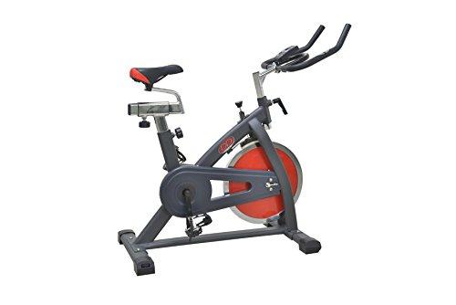 DAVID DOUILLET VSP903 Vélo d'appartement Fitness et Musculation, Gris, FR Fabricant : Taille Unique