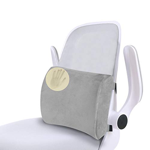 Back Lumbar Pillow for Office Chair Pure Memory Foam Chair Back Support for Lower Back Pain Relief Ergonomic Lumbar Support Pillow for Computer Office Chair Help to Maintain Good Posture (Gray)