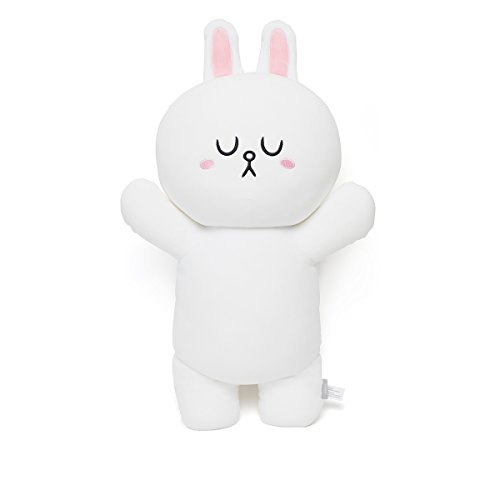CONY Character Vehicle Car Accessory ID Tag White LINE FRIENDS VIN Number