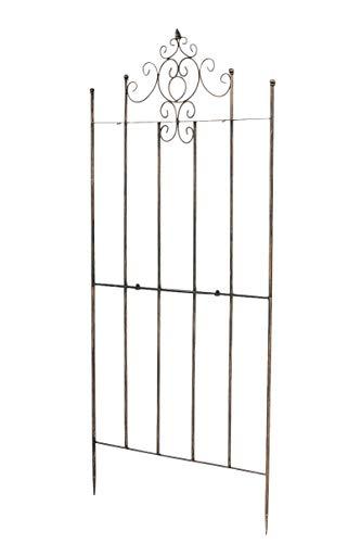 CLP Eisen-Rankgitter Paula im rustikalen Landhausstil | Rankzaun mit stilvollen Verzierungen erhältlich, Farbe:Bronze