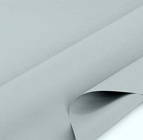 TOLKO 50cm Sonnenschutz Planen- und Sonnensegel-Stoff Meterware - Oeko-TEX® Qualität mit UV-Schutz - Wasserdicht, Wetterbeständig und Lichtecht - 170 cm breit (Grau)
