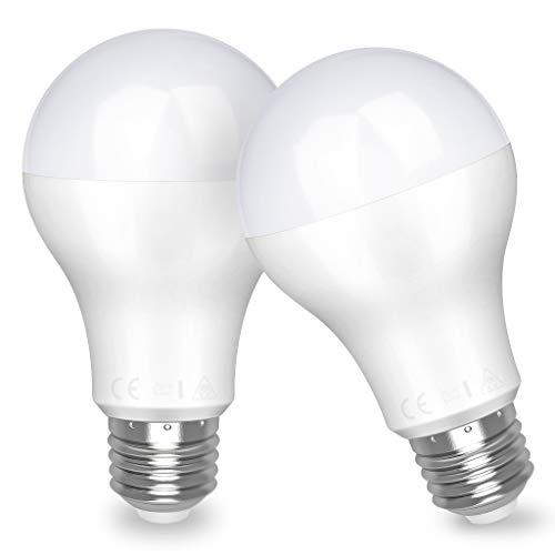 LED Lampe E27 20W (ersetzt 150W) Glühbirne,Tageslicht (4000K), 2452 Lumens Awenia Lighting, 2-er Pack
