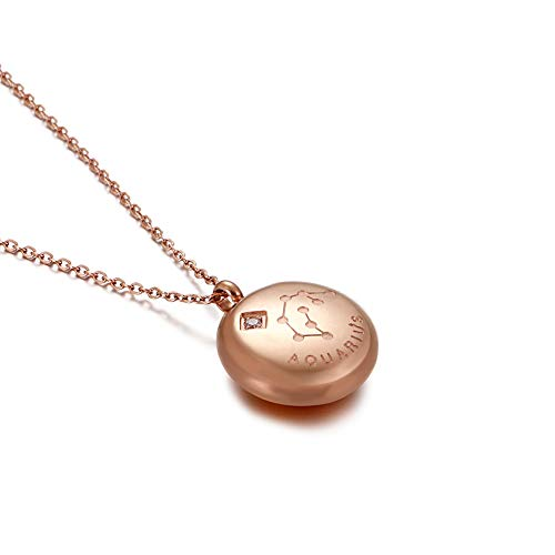 Glamorousky Fashion and Simple Plated Rose Gold Twelve Constellations Aquarius Round 316L Stainless Steel Pendant with Cubic Zirconia and Necklace