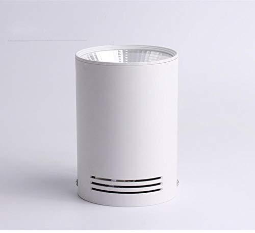 Luz empotrada LED montada en superficie Regulable 7W 12W 15W 18W 24W Lámpara empotrada LED colgante de techo COB Spot light-Cold_white_12W