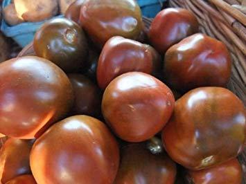 Tomate, schwarzer Prinz, seltenes Erbstück, 20 Samen!Groco